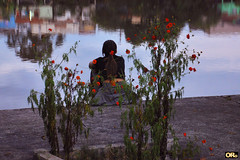 Lone girl by the river (Otacílio Rodrigues) Tags: garota girl flores flowers rio river casas houses água water reflexos reflections urban streetphoto candid calçadão promenade resende brasil oro