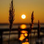 Sunrise and bokeh thumbnail