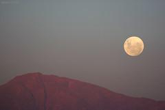 moonrise (Javiera C) Tags: santiago chile luna moon cielo sky cordillera mountain montaña andes theandes fullmoon lunallena purple