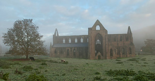 Tintern Abbey. Monmouthshire, Wales