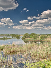 AvalonMarshes.jpegNo35 - Copy (iankellybn26dj) Tags: uk england somerset avalon spring summer landscape sky colour color hdr wetland wetlands clouds nature natural