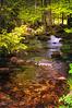 Couleurs de l'été ( photopade (Nikonist)) Tags: apple affinityphoto afsdxvrzoomnikkor1685mmf3556ged midipyrénées ruisseau nikon nikond300 nature imac