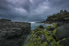 Snapper Rock blue hour (merbert2012) Tags: snapperrock ocean australia queensland goldcoast rocks pacific power outdoor water wave sunrise bluehour earlymorning clouds nikond810 longexposure nature