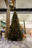 Christmas tree (A. Wee) Tags: oslo norway 奥斯陆 挪威 osl gardermoen airport 机场 christmas tree 圣诞