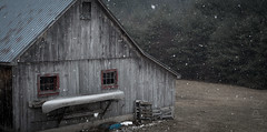 April showers. (koperajoe) Tags: earlyspring barn westernmassachusetts snowstorm newengland