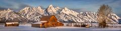 That Famous Barn (David Swindler (ActionPhotoTours.com)) Tags: grandteton grandtetons grosventre jackson moultonbarn snow teton tetons winter wyoming barn