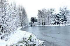 Lac de STMandé 07.02.2018 0J5A9467 (MUMU.09) Tags: france stmandé lacdestmandé paysage grandangle neige hiver canoneos7dmarkii 1635mm