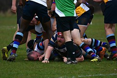 Bottom of the pile (Steve.T.) Tags: rugby rugbyunion withamrugbyclub sport sportsphotography socks witham essex nikon d7200 sigma150600 sportsaction player players colours colors colourful face bancroftrugbyclub