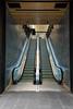 illuminated (Jocey K) Tags: newzealand nikond750 southisland christchurch architecture buildings rebuild escalator thecrossingpercinct