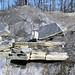 Lower Mercer Limestone (Middle Pennsylvanian; Frazeysburg Pit, Muskingum County, Ohio, USA) 16