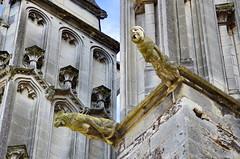 1299 Val de Loire en Août 2017 - Tours, la Cathédrale (paspog) Tags: tours valdeloire france cathédrale cathedral kathedral 2017 gargouille gargoyles gargouilles