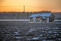 dying countryside (sami kuosmanen) Tags: kouvola elimäki suomi sky snow spring yellow abandoned house taivas talvi talo hirsitalo log old outdoor orange finland forest tree trees travel nature north europe expression eerie sunset