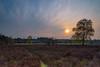 Schaapskooi Drie - Ermelo (johan wieland) Tags: 2018 drie schaapskooi spring sunset veluwe voorjaar zonsondergang