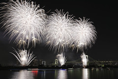 White fireworks in Odaiba. (cate♪) Tags: fireworks odaiba 2018 rainbowbridge tokyo