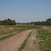 Riel - Regte Heide