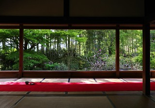 a spring picture-frame garden / Kyoto Hosen-in 京都大原 宝泉院
