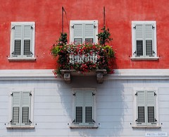 The Colours of Italy (madbesl) Tags: italien italy italia europe europa balkon balcony fenster windows blumen flowers trient trento trentino olympus omd em10 m10 omdem10 zuiko1250 explore