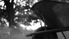 wheel barrow (offbeatdestiny) Tags: wheel bokeh oak monochromatic vintage rustic