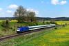 Beacon Rail / Alex ER 20-001 Aitrang (0039n) (christophschneider1) Tags: kbs970 allgäubahn aitrang ostallgäu allgäu länderbahn alex alx84138 beaconrail siemens er20 er20001 löwenzahn löwenzahnblüte d850