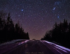 Twinkle Twinkle (whalenbrenda) Tags: nightshot night dark darkness stars twinkle winter country countryroad dirtroad snow cold starry longexposure wintertime photograph image outdoors woods forest trees sky nightsky road rural