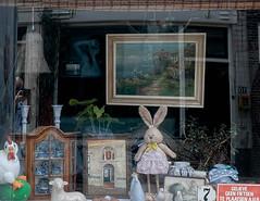 Window Display With Reflections, Gouda (natures-pencil) Tags: window display reflection painting cockerel candelabra bunny rabbit delftware lamb sign seagulls plants lamp photographers