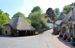 Cockington (R~P~M) Tags: england uk unitedkingdom greatbritain devon torbay thatch cockington village forge