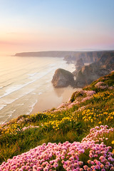 Bedruthan Steps (Rich Walker75) Tags: bedruthan steps cornwall thrift sea seascape evening sunset sky rock beach beaches england landscape landscapes landscapephotography flowers seaside seascapes canon efs1585mmisusm eos eos80d nationaltrust