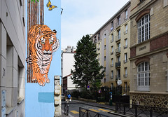 Liberté (HBA_JIJO) Tags: streetart urban graffiti pochoir stencil paris animal art france hbajijo wall mur painting mosko peinture spray tigre tiger urbain félin view street rue freedom