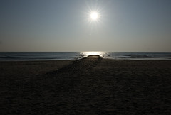Where is everybody ? (eric zijn fotoos) Tags: holland sea sunset zee strand zonsondergang sun sonyrx10m3 zon nederland noordholland beach licht light seaside sand zand sky lucht ocean water bay baai
