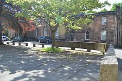 Adam Smith Courtyard (noxyin) Tags: glasgow university courtyard architecture modern concrete tree