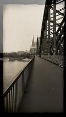 Cologne Art (gklheim) Tags: cologne köln kölsch kölle kölnerdom koeln koln kölner colonia sw black white blackanwhite