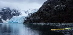 Liquid Adventures (Coast to Coast and In Between) Tags: naturalbeauty glacier northwesternglacier kenaifjords kayak liquidadventures water icywaters harrisbay alaska sony pointandshoot