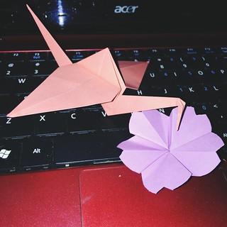 Crane and Cherry Blossom