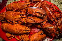 2018 - photo 150 of 365 - lobsters ready to eat (old_hippy1948) Tags: lobsters delicious