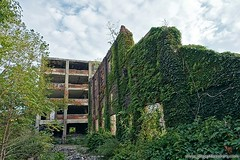 Ivy covered ruins. http://www.placesthatwere.com/2018/02/cleveland-railway-co.html #ruins #ivy #abandoned #abandonedplaces #urbex #urbanexploration #industrialruins #urbandecay #rustbelt #cleveland #abandonedohio #abandonedcleveland #lostplaces #lostplace (placesthatwere) Tags: abandoned urbanexploration ghosttowns urbex rurex abandonedplaces forgottenplaces urbandecay decay beautifuldecay