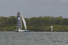 LOX_3720 (Lox Pix) Tags: australia queensland brisbanetogladstone yachtrace catamaran trimaran 2018 bossracing multihull loxpix moretonbay shorncliffe cabbagetreecreek rudder aground sailing