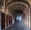 DSCF9689.jpg (Caffe_Paradiso) Tags: venice venezia venise grandcanal rialto dogs