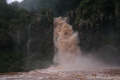 Iguazu Falls, as seen from the Iguazu River in Brazil (adventurousness) Tags: iguacufalls iguassufalls iguazufalls argentina brasil brazil falls iguacu iguassu iguazu waterfall waterfalls