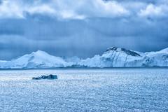 Giants of the Ocean (*Capture the Moment*) Tags: 2017 clouds cruise cruiseship diskobay diskobucht eisberge elemente greenland grönland iceberg msdeutschland sonya7m2 sonya7mii sonya7mark2 sonya7ii sonyfe70200mmf28gmoss sonyilce7m2 wasser water wolken
