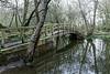 Salisbury (Tuomo Lindfors) Tags: england unitedkingdom yhdistynytkuningaskunta isobritannia dxo filmpack greatbritain silta bridge vesi water