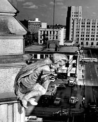 Winnipeg Tribune Building Gargoyle, 1969 (vintage.winnipeg) Tags: winnipeg manitoba canada vintage history historic newspapers buildings