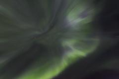 invitée surprise (lucas.demierre) Tags: finlande finland laponie lapland nature ciel nuit nightsky star étoiles grande ours auroreboréale northernlight