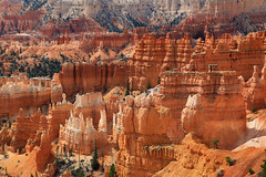 Bryce Canyon (erichudson78) Tags: usa utah brycecanyonnationalpark paysage landscape canoneos6d canonef24105mmf4lisusm canyon southwest hoodoos orange cmwdorange