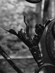 (logabian) Tags: ferronnerie métal