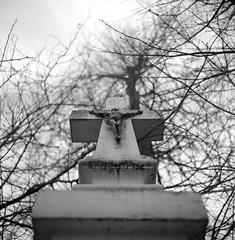 (aandred) Tags: mamiyac3 sekor3565mm rolleisuperpan christ chrystus krzyż cross ukrzyżowanie crucifixion easter wielkanoc lookingup kapliczka shrine