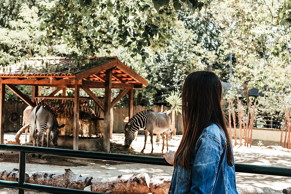 Discovering Portugal | Lisbon Zoo