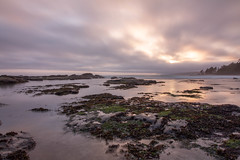 Sunset at Botanical Beach (Joel Apple) Tags: pacificnorthwest beach ocean northamerica things moody canada vancouverisland britishcolumbia places clouds