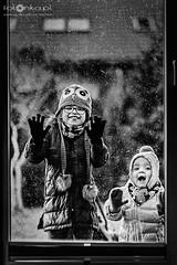 Dzieci i zima (fotonka.pl) Tags: portraits portrait funny art fun wilgosz wwwkochamylaurepl blog rodzina family familyphoto familyphotographer familyphotography familyphotos kids kid kidsphotos kidsphoto kidsphotographer kidsphotography children child childrenphotographer childrenphotos childrenphotography childrenphoto childhood photography photographer photo photos people ludzie dzieci dziecko dziecinstwo babyphotos babyphoto baby canon canoneos6d memories childmemories childhoodmemories bw bwphoto bwphotos blackandwhite black blackandwhitephotography blackandwhitephotos blackandwhitephoto monochrome window windows glass december outdoor smile happy happyness snow snowphoto snowphotos winter winterwonderland winterworld cold weather