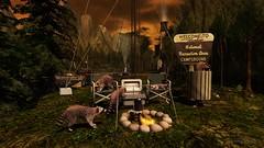 Bandits. (delilahhannu) Tags: │t│l│c│ cosmopolitan decor raccoons animals camping secondlife blogging