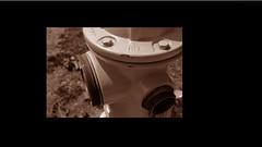 Sephia and Enhancing colour and tone (tioni.2000) Tags: